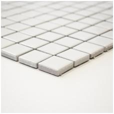 Mozaika White Mat 23x23mm